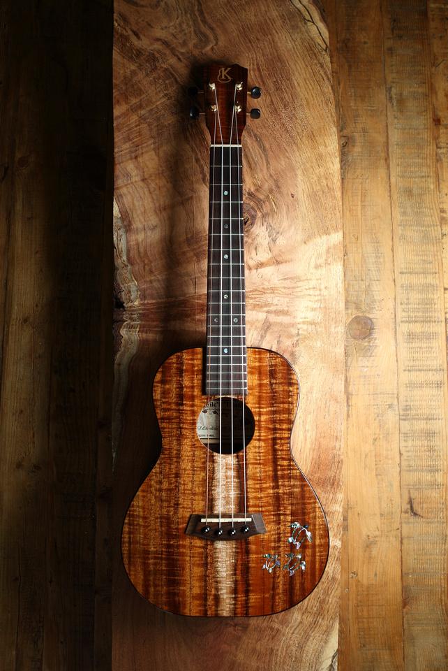 HLT_ukulele_003