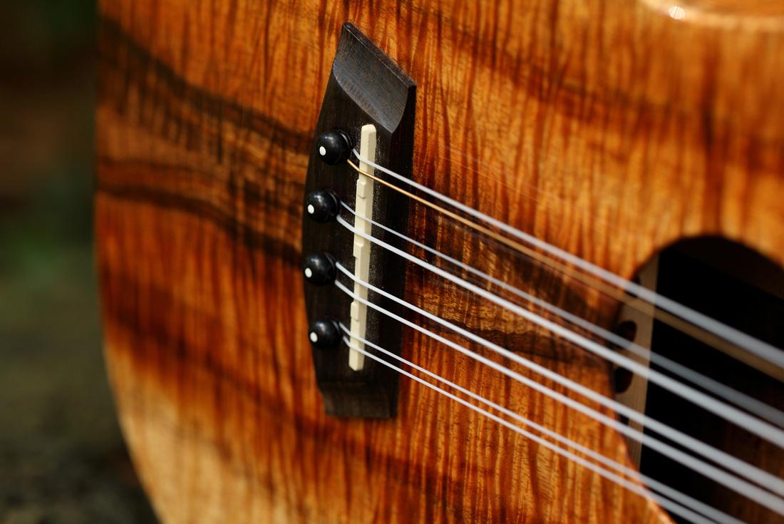 HLT_ukulele_029