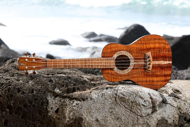 HLT_ukulele_019