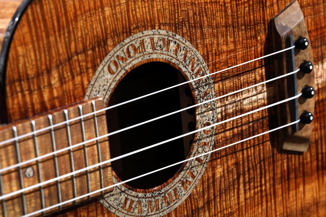 HLT_ukulele_021