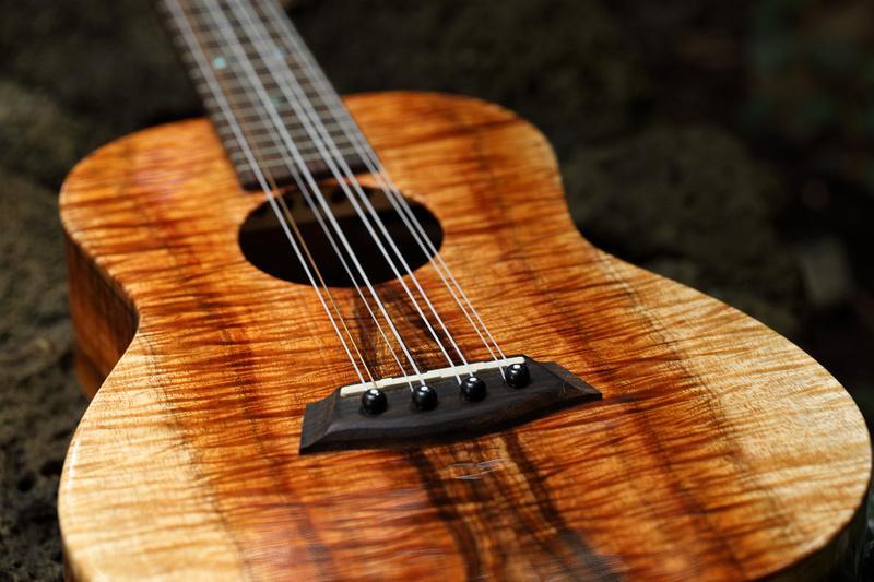HLT_ukulele_038
