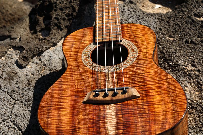 HLT_ukulele_025
